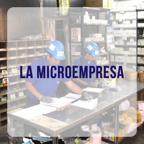 INKARIPERU | LA MICROEMPRESA